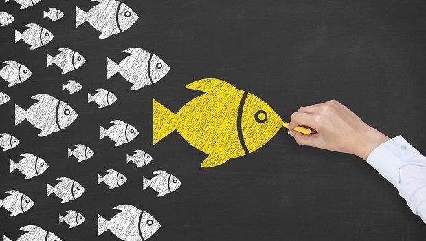 Identifica los mejores influencers de las redes sociales